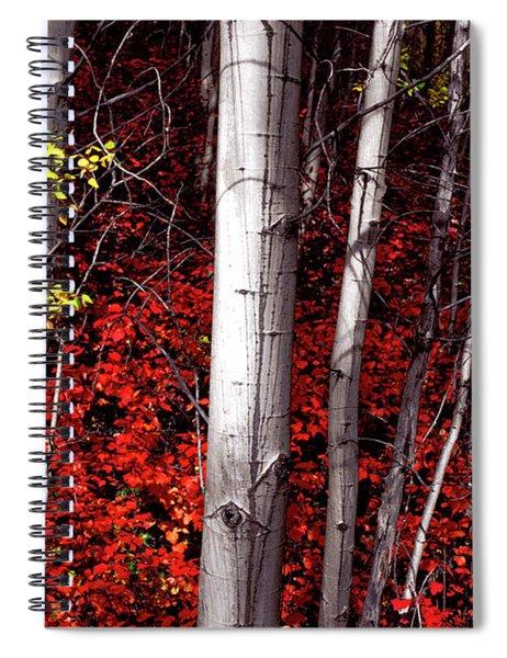 Stealing Beauty Spiral Notebook