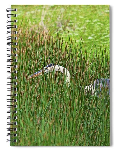 Stealth Heron Spiral Notebook
