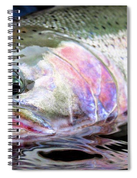 Steelhead 3 Spiral Notebook