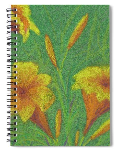 Stella D'oro #2 Spiral Notebook