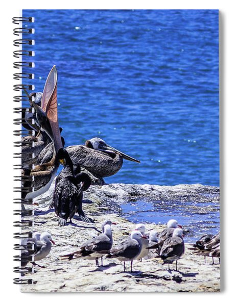 Pelican Sticking His Neck Out Spiral Notebook