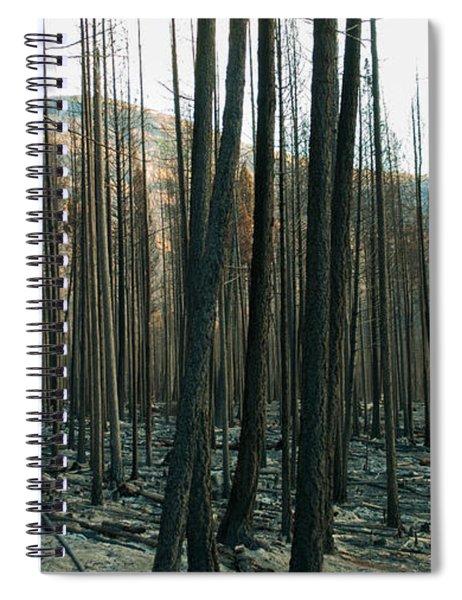 Stickpin Spiral Notebook