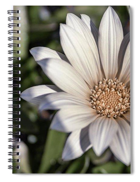 Still Dreaming Spiral Notebook