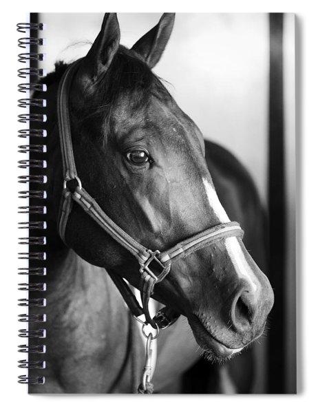 Horse And Stillness Spiral Notebook