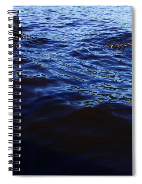 Stillwater Spiral Notebook