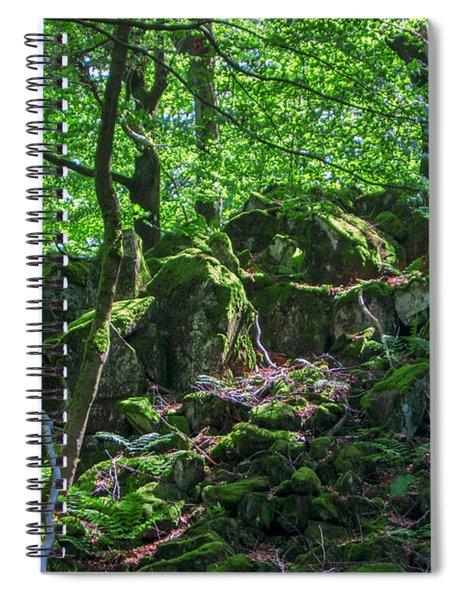 Stones In A Forest In Vogelsberg Spiral Notebook