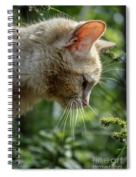 Stop And Smell The Flowers 9433a Spiral Notebook