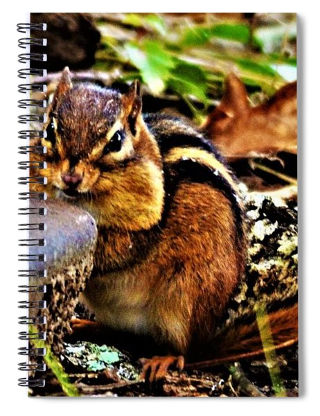 Storing For Winter Spiral Notebook