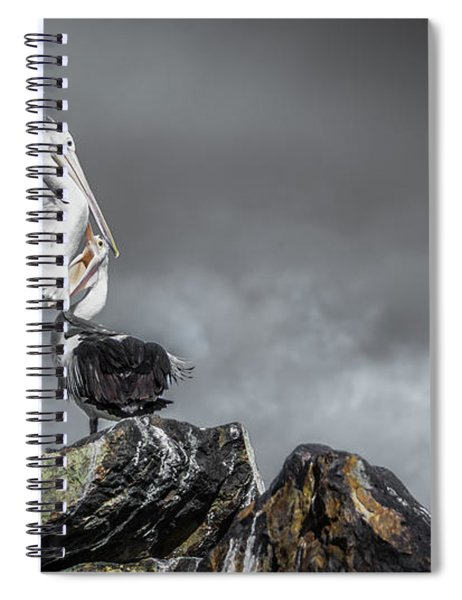 Storm Birds Spiral Notebook