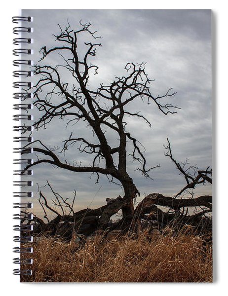 Storms Make Trees Take Deeper Roots  Spiral Notebook