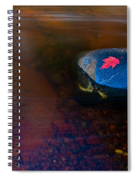 Stranded Leaf Spiral Notebook