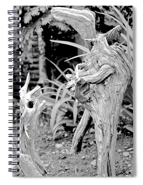 Strange Conversants Spiral Notebook