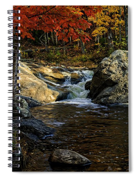 Stream In Autumn No.17 Spiral Notebook