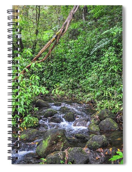 Stream In The Rainforest Spiral Notebook