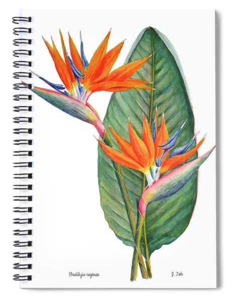 Strelitzia Reginae Bird Of Paradise Spiral Notebook