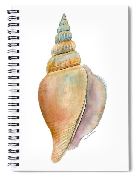 Strombus Vittatus Shell Spiral Notebook by Amy Kirkpatrick