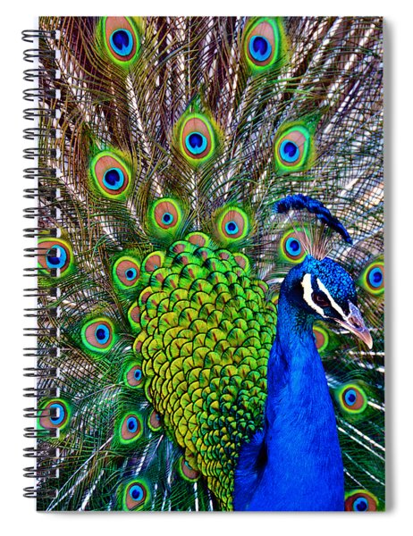 Strut Spiral Notebook