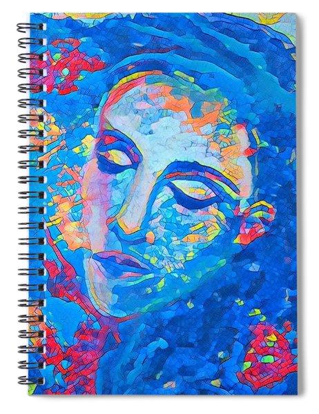 Stuck In A Moment Spiral Notebook