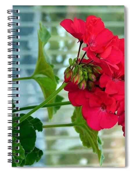 Stunning Red Geranium Spiral Notebook