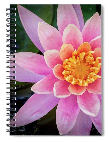 Stunning Water Lily Spiral Notebook