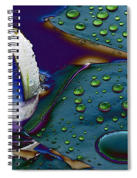 Subdued Light And Daydreams Spiral Notebook