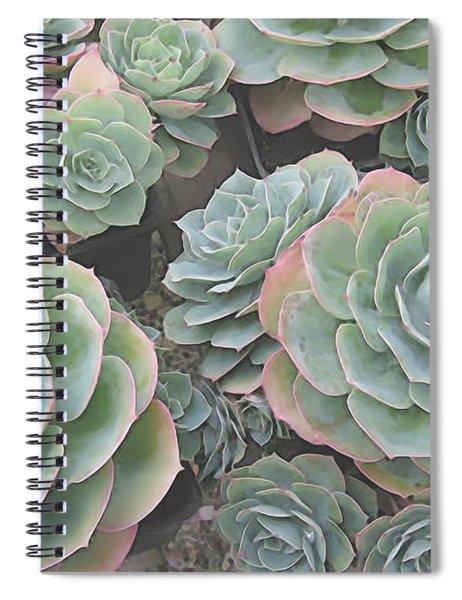 Succulent 2 Spiral Notebook