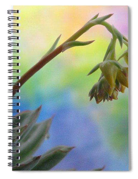 Succulent At Dawn Spiral Notebook