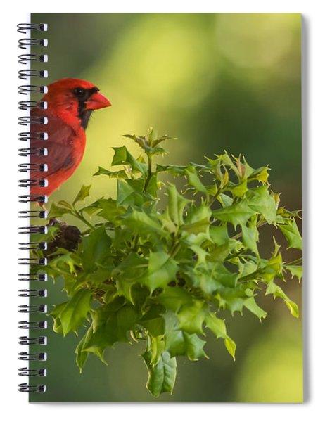 Summer Cardinal New Jersey Spiral Notebook