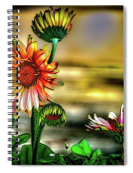 Summer Daisy Spiral Notebook