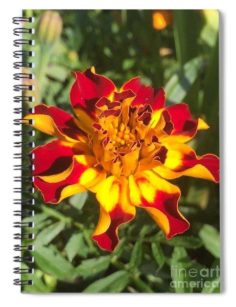 Summer Marigold Spiral Notebook