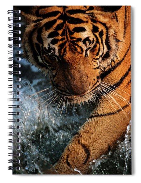 Summer Play Spiral Notebook
