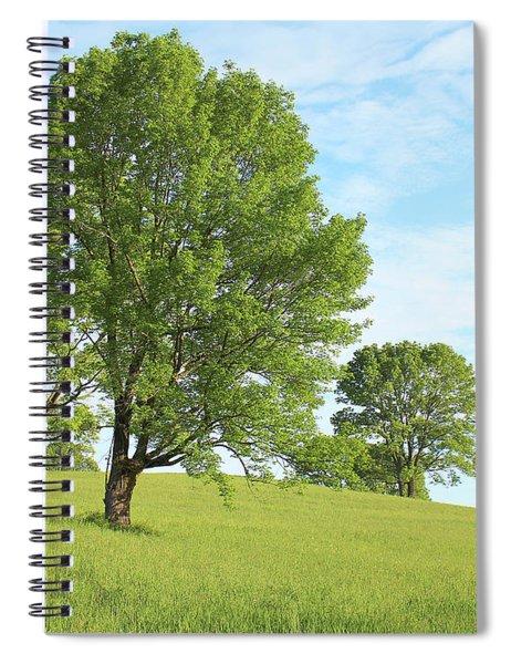 Summer Trees Spiral Notebook