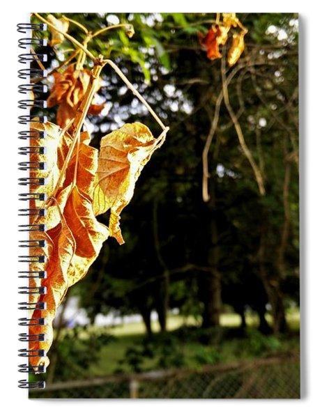 Summer's Toll Spiral Notebook