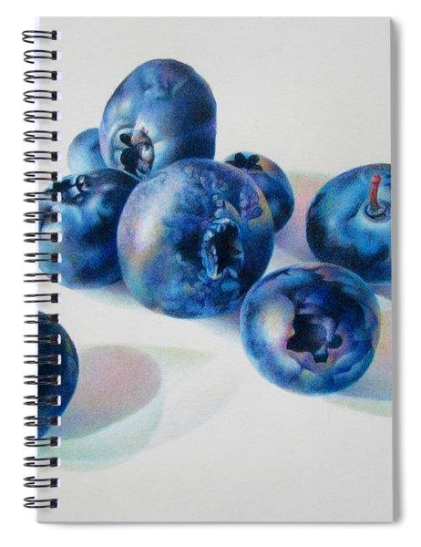 Summertime Blues Spiral Notebook