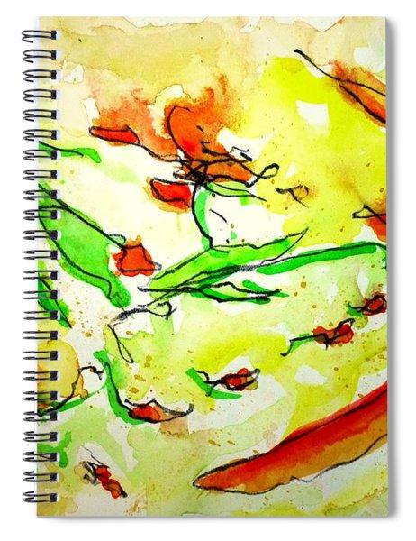 Sun Catchers 2 Spiral Notebook