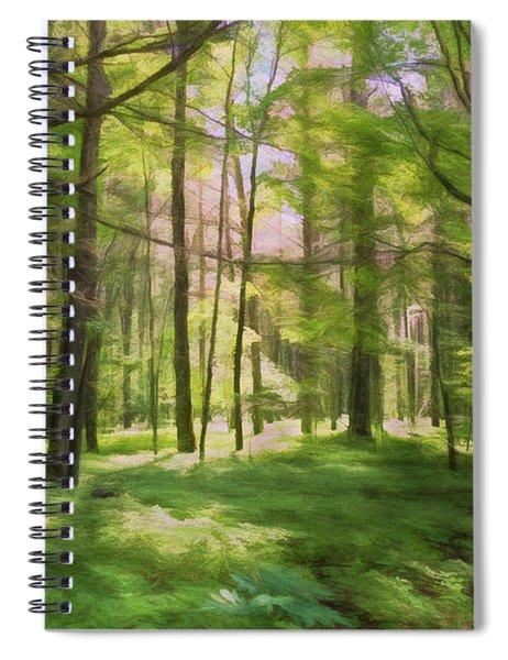 Sun Dappled Forest Spiral Notebook