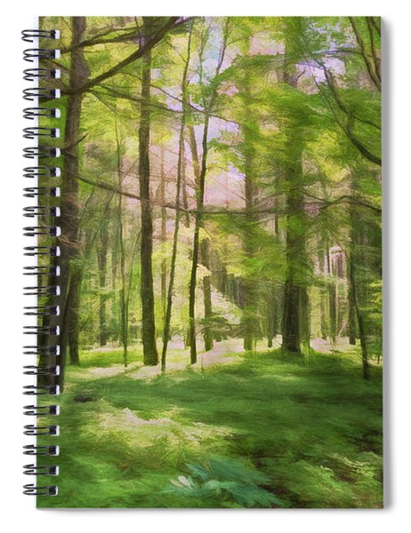 Sun Dappled Forest Spiral Notebook