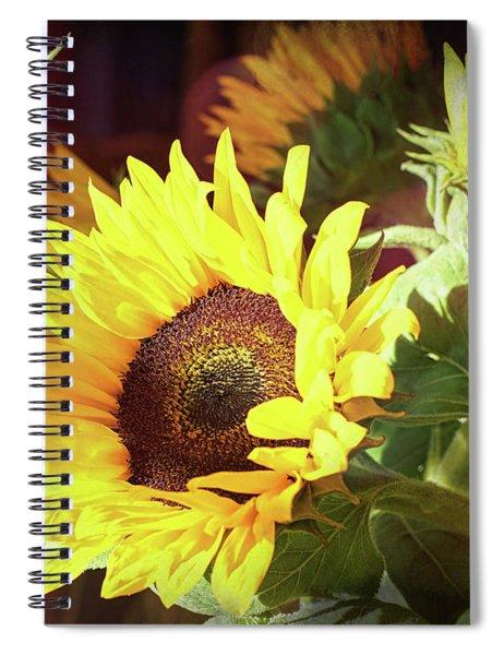 Sun Of The Flower Spiral Notebook