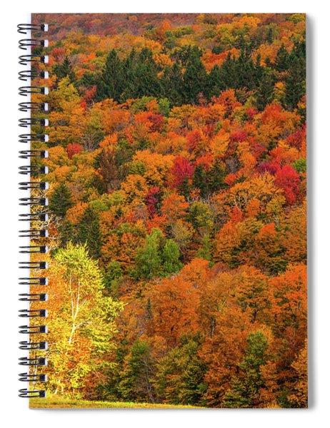 Sun Peeking Through Spiral Notebook