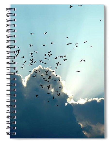 Sun Ray Aerobatics Blue Sky Spiral Notebook
