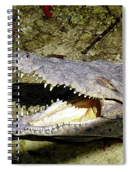 Sunbathing Croc Spiral Notebook