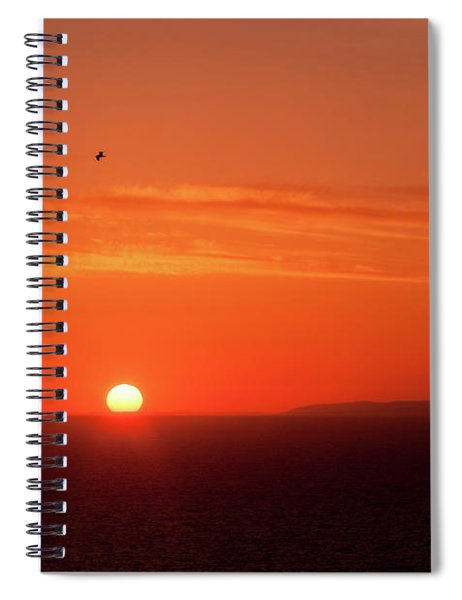 Sunbird Spiral Notebook