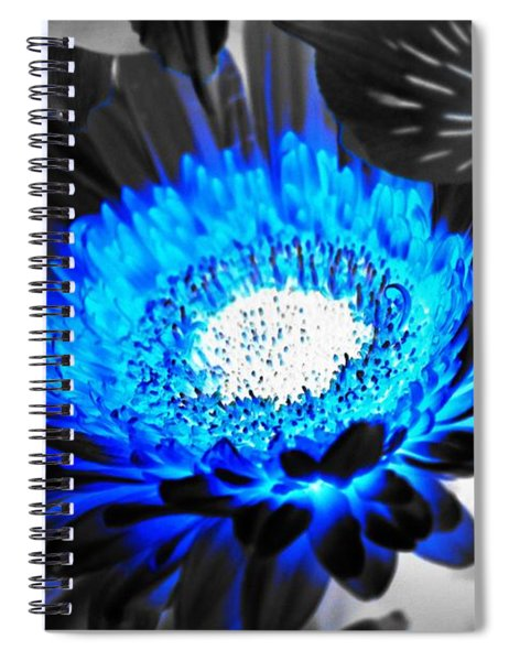 Spiral Notebook featuring the photograph Sunflower Blues by Patti Whitten