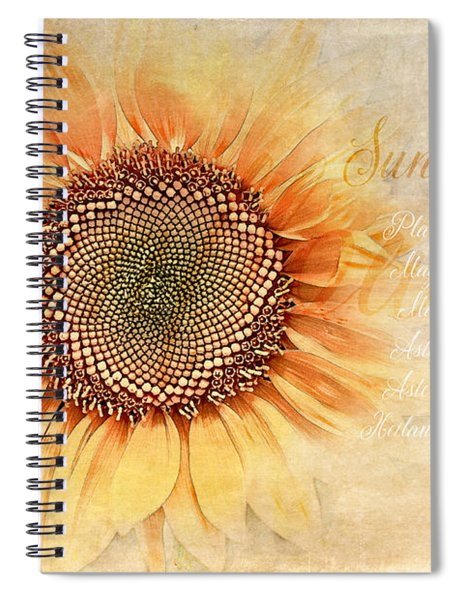 Sunflower Classification Spiral Notebook