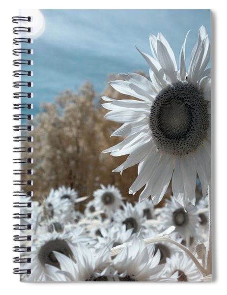 Sunflower Infrared  Spiral Notebook