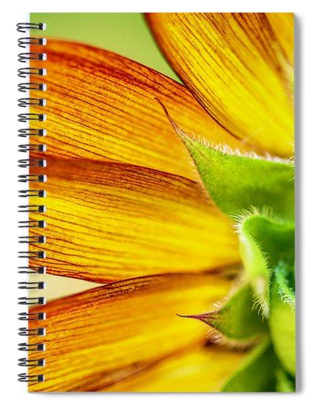 Sunflower Macro 1 Spiral Notebook