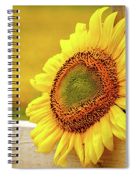 Sunflower On The Fence Spiral Notebook