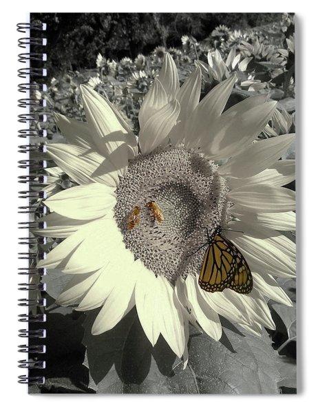 Sunflower Tint Spiral Notebook
