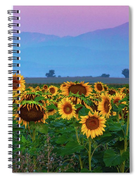 Spiral Notebook featuring the photograph Sunflowers At Dawn by John De Bord