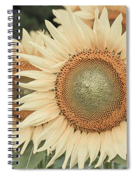 Sunflowers Detail Spiral Notebook